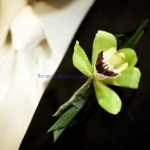Weddings - $ per client basis